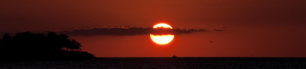 From Key Fisheries, Marathon, FL
